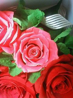 花の音 プリザーブドフラワー